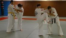 art martial la chevrolière